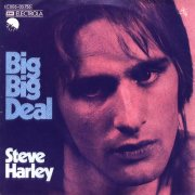 Steve Harley, 'Big Big Deal'