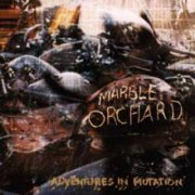 Marble Orchard, 'Adventures in Mutation'