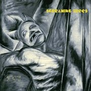 Screaming Trees, 'Dust'